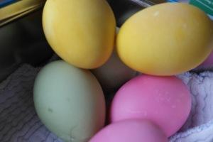 Hvordan farge egg?